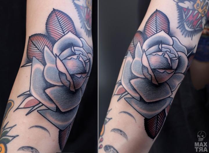 rosa gomito ludovica